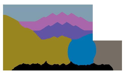 SMI-logow500